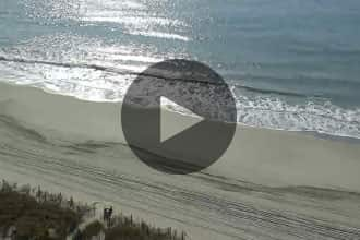 Coral Beach Resort webcam